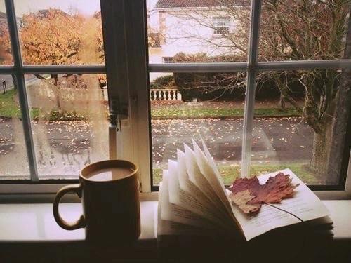 livro-leitura-xícara-outono